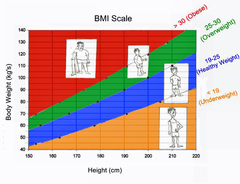 the use of body mass index Health + behavior don't use body mass index to determine whether people are healthy, ucla-led study says bmi incorrectly categorizes millions of 'obese' people as unhealthy, according to.